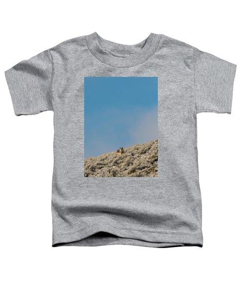 W24 Toddler T-Shirt