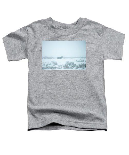 W29 Toddler T-Shirt