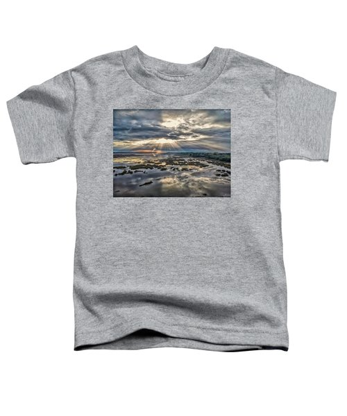 Whale Branch - Angel Rays Toddler T-Shirt