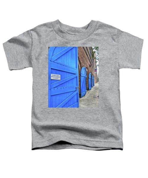 Which Blue Door Toddler T-Shirt