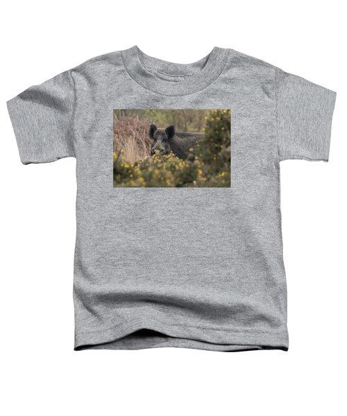 Wild Boar Sow Toddler T-Shirt