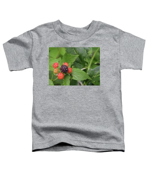 Wildly Fruity Toddler T-Shirt