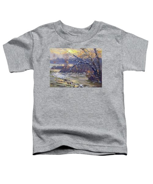 Winter Sunset By Niagara River Toddler T-Shirt