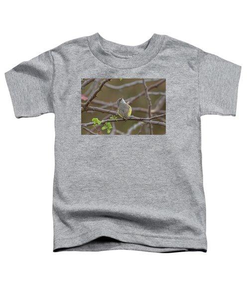 Yellow-bellied Eremomela Toddler T-Shirt