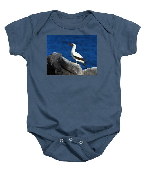 Nazca Booby Baby Onesie by Tony Beck