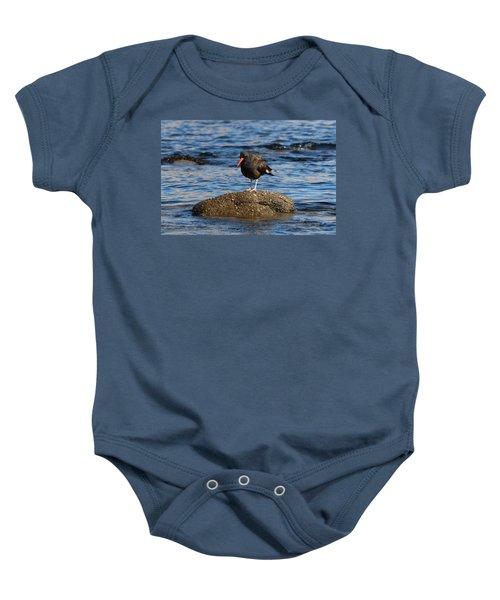 American Oystercatcher - 2 Baby Onesie
