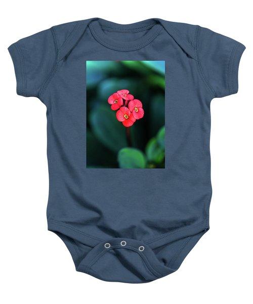 Beautiful Summer Flowers Baby Onesie