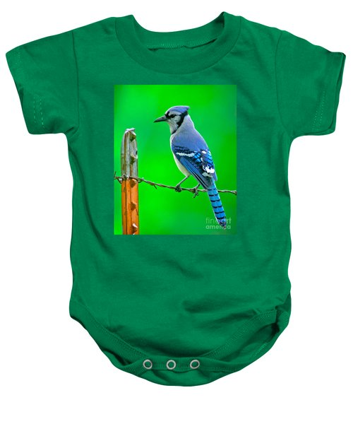 Blue Jay On The Fence Baby Onesie by Robert Frederick