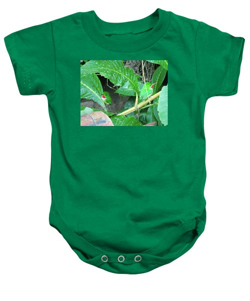 Jamaican Toadies Baby Onesie by Carey Chen