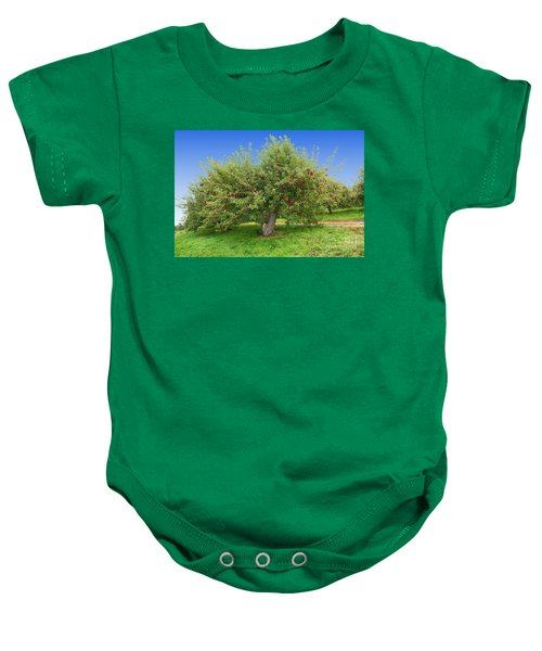 Large Apple Tree Baby Onesie