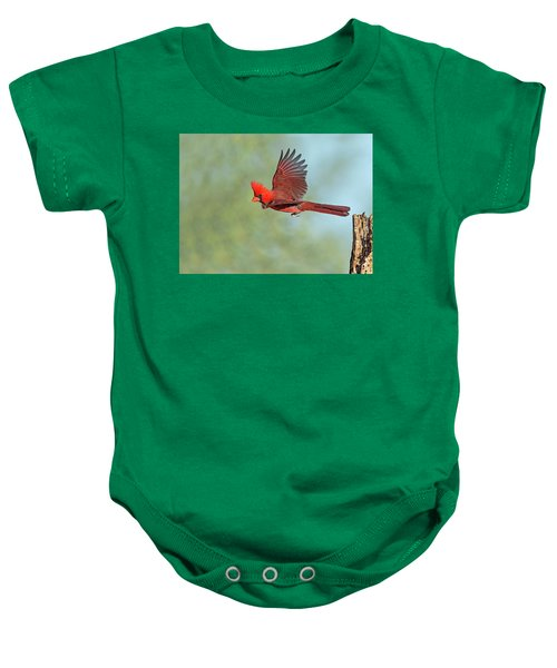 Cardinal On A Mission Baby Onesie