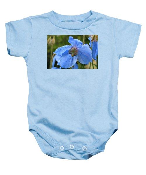 Wild Blue Poppy Baby Onesie