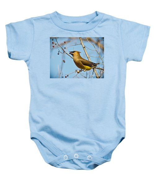Cedar Waxwing With Berry Baby Onesie by Robert Frederick