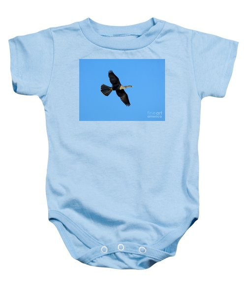 Anhinga Female Flying Baby Onesie by Anthony Mercieca