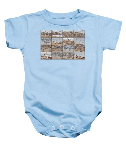 Birds Of Many Feathers Baby Onesie by Betsy Knapp
