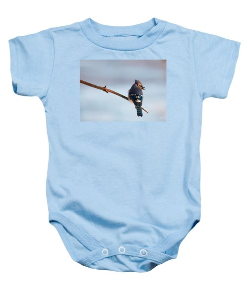 Blue Jay With Nuts Baby Onesie by Everet Regal