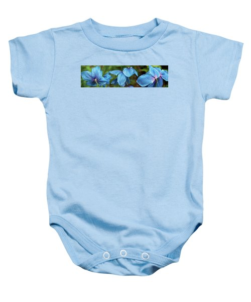 Close-up Of Himalayan Poppy Flowers Baby Onesie