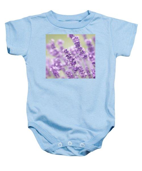 Lavender Dreams Baby Onesie