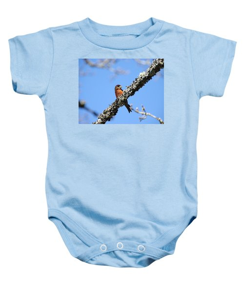 Red Crossbill Finch Baby Onesie by Marilyn Wilson