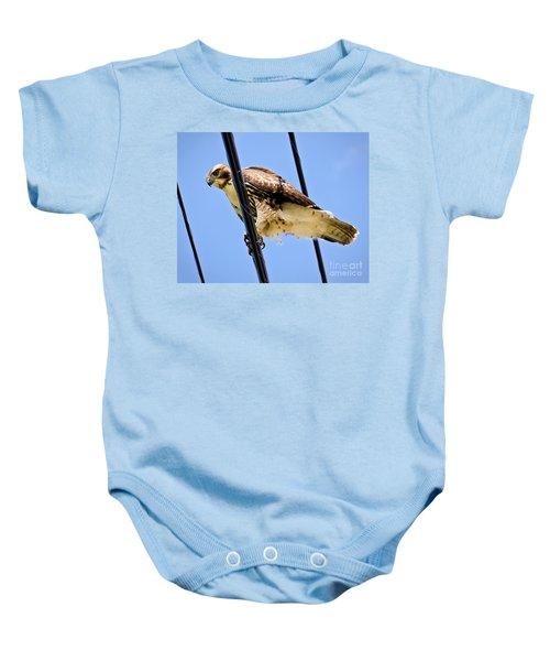 Redtailed Hawk Baby Onesie