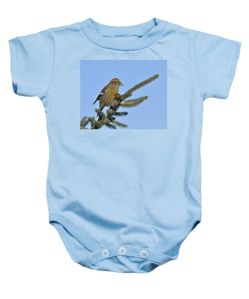 Spruce Cone Feeder Baby Onesie by Tony Beck
