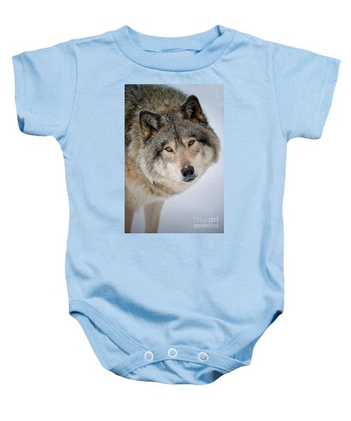 Timber Wolf Pictures 255 Baby Onesie