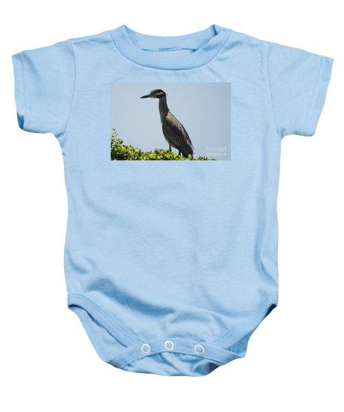 Yellow-crowned Night-heron Baby Onesie