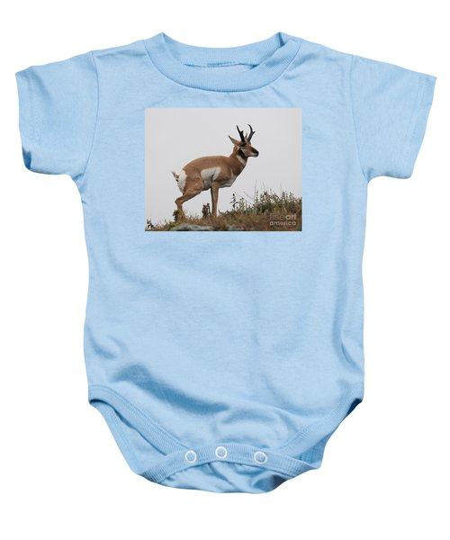 Antelope Critiques Photography Baby Onesie