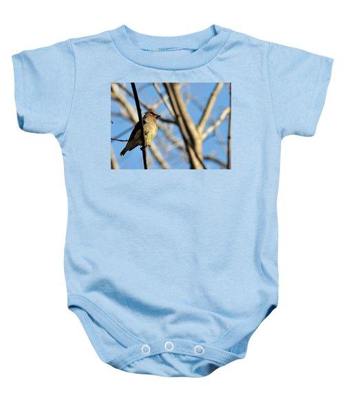 Cedar Wax Wing Baby Onesie by David Arment