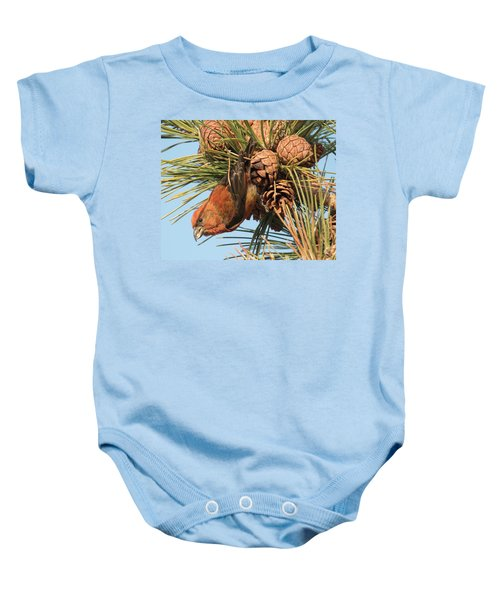 Crossbill Baby Onesie by Judd Nathan
