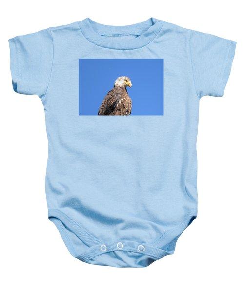 Bald Eagle Juvenile Perched Baby Onesie