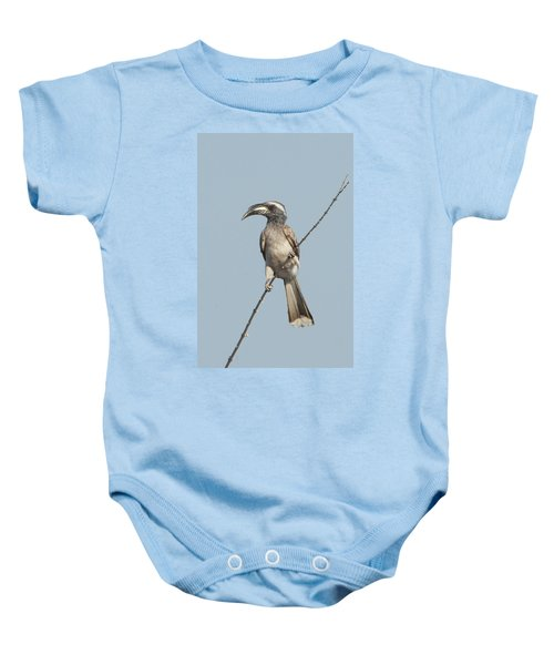 African Grey Hornbill Tockus Nasutus Baby Onesie by Panoramic Images