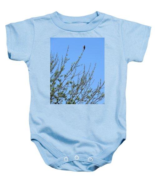 American Kestrel Atop Pecan Tree Baby Onesie