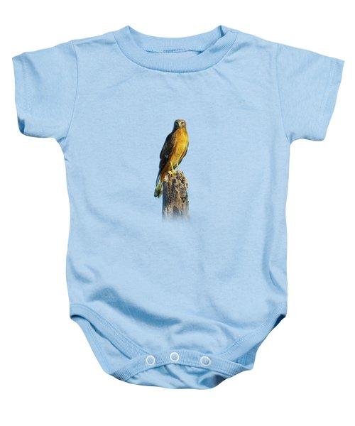 Northern Harrier Hawk Baby Onesie