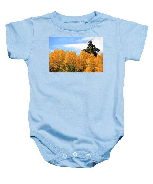 Autumn In The Owyhee Mountains Baby Onesie