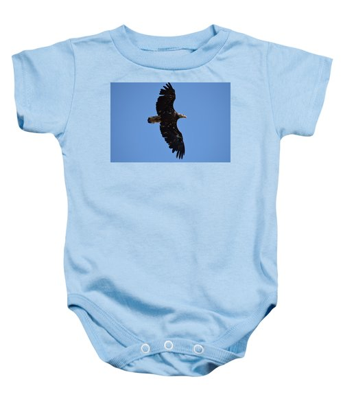 Bald Eagle Juvenile Soaring Baby Onesie