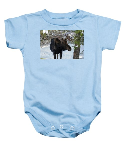 Big Moose Baby Onesie