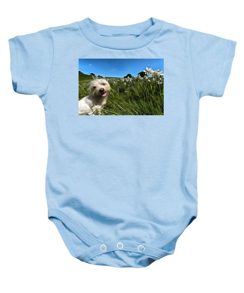 Blooming Daffodils In The Antola Park With Maltese II Paint Baby Onesie