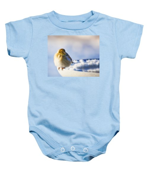 Cold American Goldfinch Baby Onesie