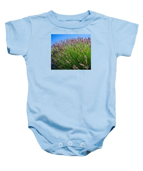 Country Lavender I  Baby Onesie