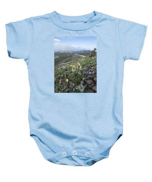 Denali Wildflowers Baby Onesie