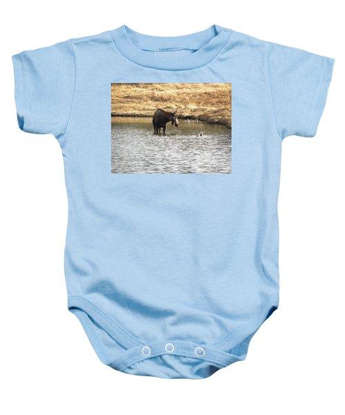 Ducks - Moose Rollinsville Co Baby Onesie