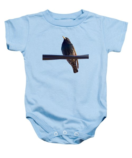 European Starling Trasparent Background Baby Onesie