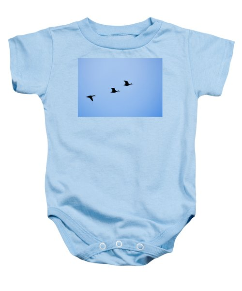 Flight Of Three Baby Onesie