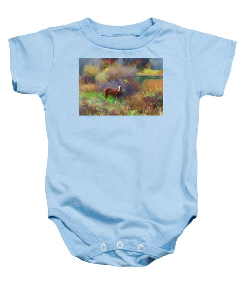 Horse Of Many Colors Baby Onesie
