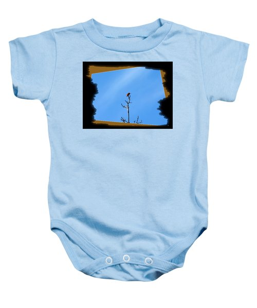 Hummingbird Optical Zoom Baby Onesie
