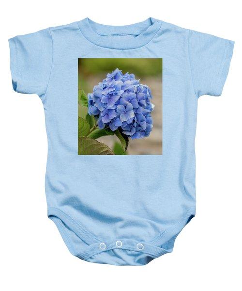#hydrangea In Blue Baby Onesie