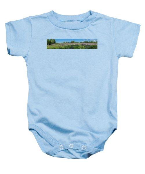Lupine Field Baby Onesie