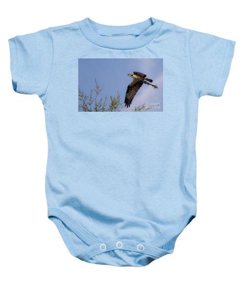 Osprey Collecting Sticks Baby Onesie