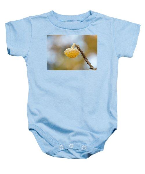 Paperbush Flower Baby Onesie